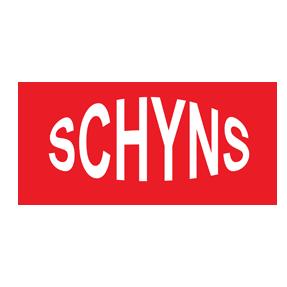 Shyns