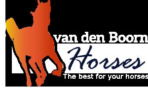 Willie van den Boorn